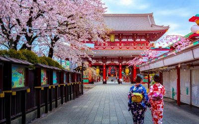 Япония: цветение сакуры (9 дн – 7 н)