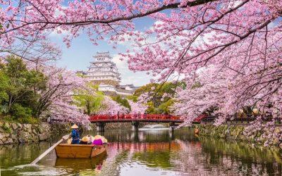 Знакомство с Японией