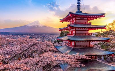 Авторский тур Цветение Сакуры в Японии (8 дней-7 ночей)